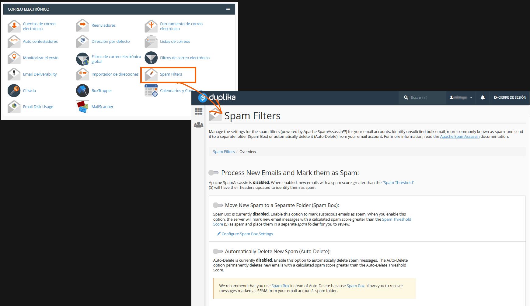 Guía inicial de cPanel (Actualizada a la versión 2019) 24