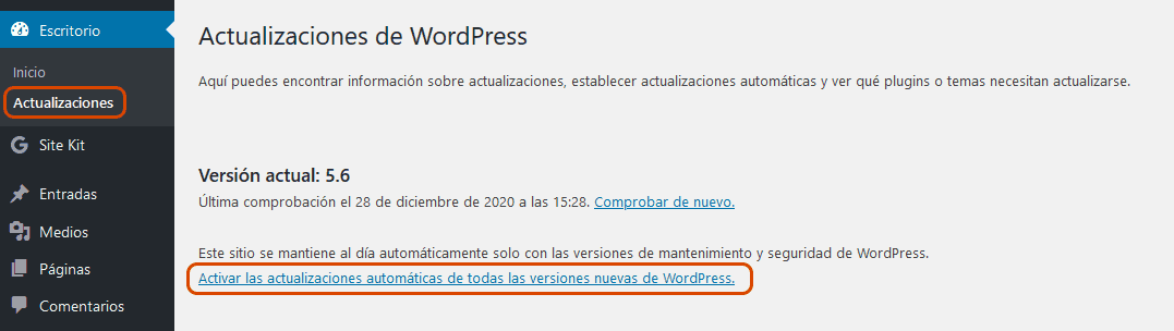 WordPress 5.6 11