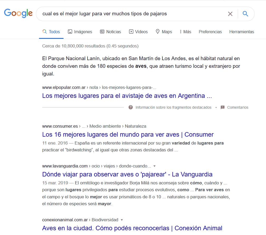 ¿Qué es Google RankBrain? 3